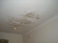 Rain Damage Repair Clean Up Drying Melbourne Sydney